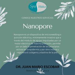 Nanopore - Dr. Juan Mario Escobar